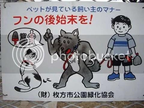 Dog chiding cat (fun!)