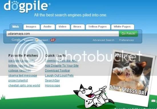 Screenshot Dogpile
