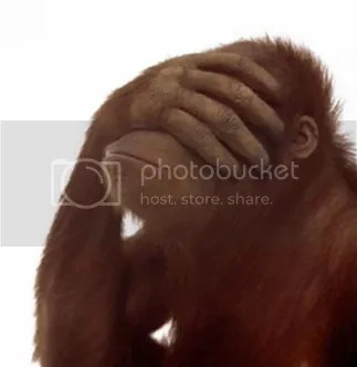 Facepalm Orangutan