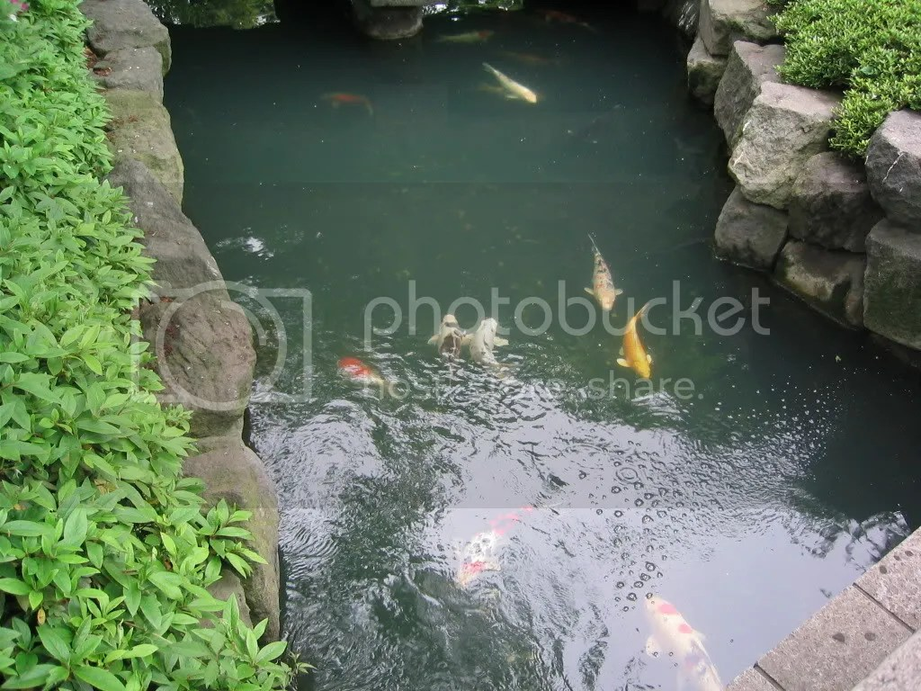 Sensoji Temple garden 2