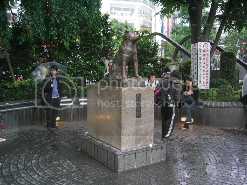 Hachiko the dog