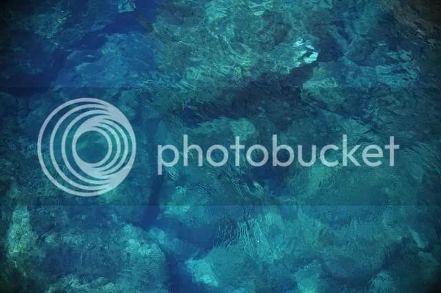 photo 128.jpg