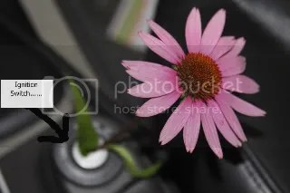 flower in ignition switch