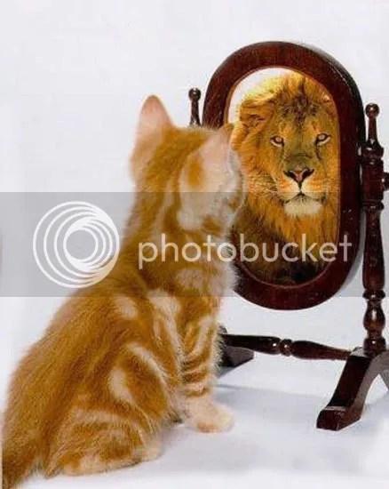 https://i2.wp.com/i195.photobucket.com/albums/z149/minh40/Hinhvuigift2009/1327129974-chia-tay-nam-mao-13-1.jpg