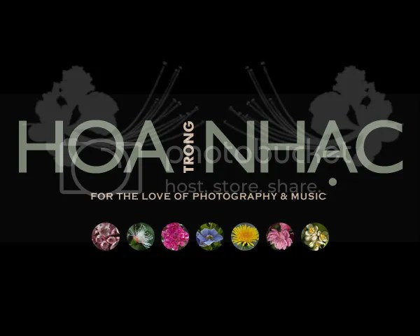 https://i2.wp.com/i195.photobucket.com/albums/z149/minh40/HoaTrongNhac/hoanhac1.jpg