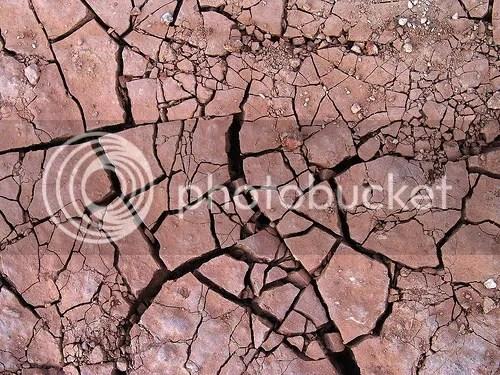 dry earth photo: Dry 2896560664_4e341aa7e1.jpg