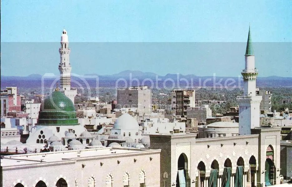 298c.jpg green_dome0011 picture by saher_taif