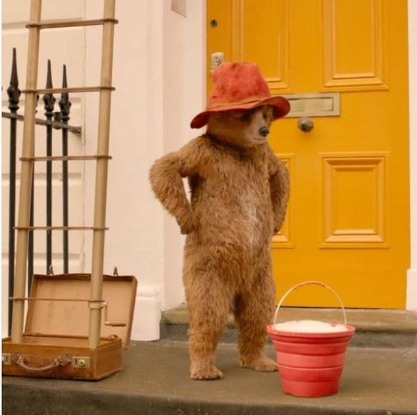 paddington bear film # 39