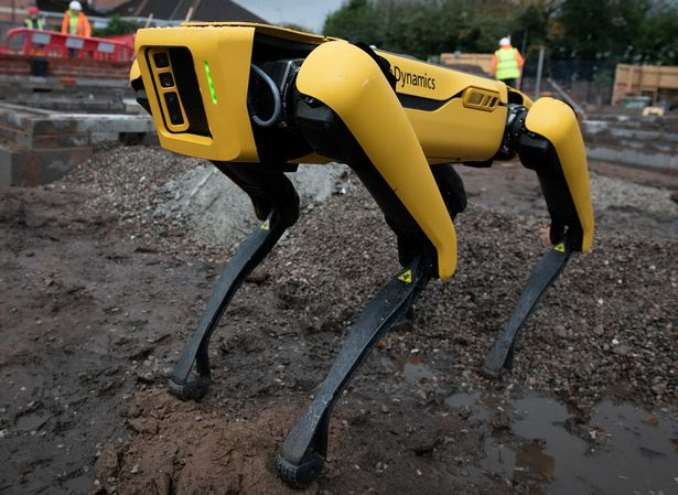 Spot the robotic dog in action