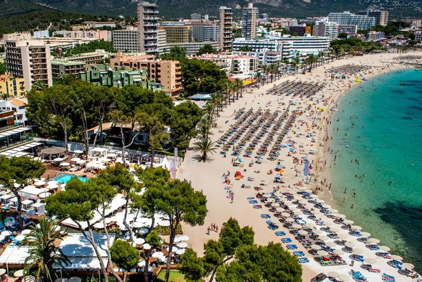 MALLORCA, SPAIN - JULY 13: Tourist sunbathe at Magaluf beach on July 13, 2014 in Mallorca, Spain. Magaluf is one of the Britain's favorite holiday destinations popular with sun, beach and clubbers alike. (Photo by David Ramos/Getty Images)