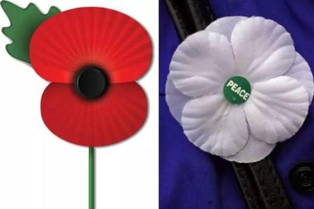 Best wild flowers poppy flower meaning military wild flowers wild flowers poppy flower meaning military mightylinksfo