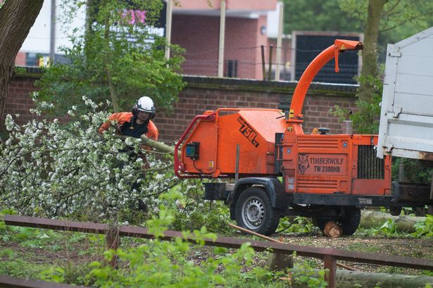 Prebend Gardens, Prebend St, Leicester. Trees being cut down in the park to prevent anti-social behaviour