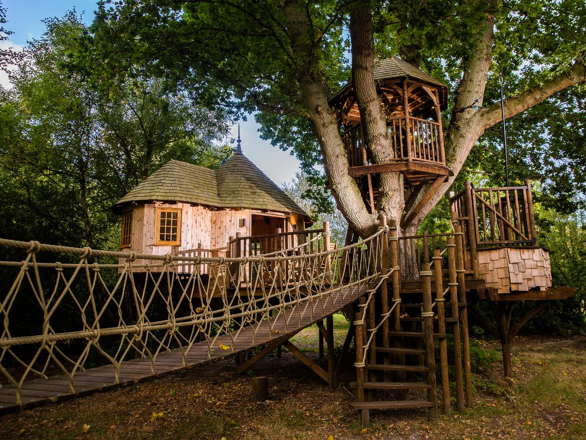 See Inside The Luxury Tree Houses On Sale For More Than The Average Semi Detached Home Mirror Online