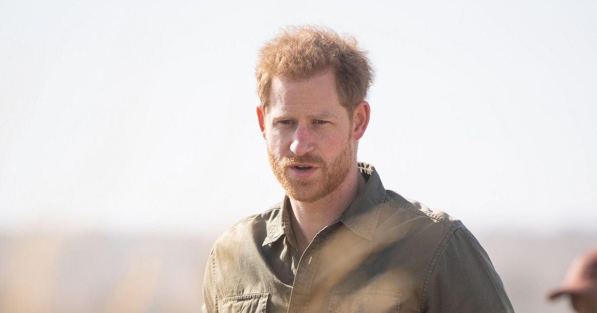 """Prince Harry """"would say that his greatest wish was to work as a tour guide and be himself"""""""