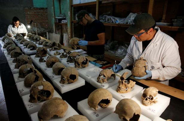 Abel Guzman, Rodrigo Bolanos and Miriam Castaneda of the National Institute of Anthropology and History (INAH) examine skulls at the site in June 2017