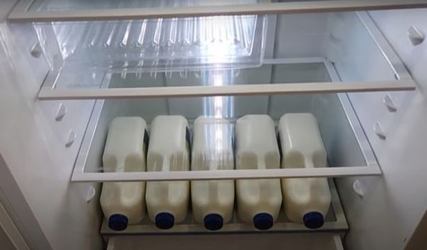Jugs of milk inside Jeni Bonell's fridge