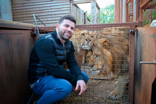 Reece Oliver pictured with his two Lions, Rora (left) and Rocky.