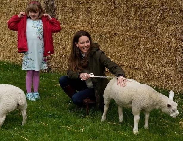 Kate stroking a lamb at Manor Farm