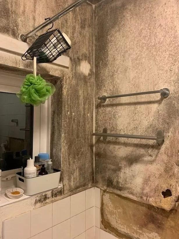 Mould covers the walls inside Larisa Orlova's bathroom