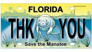 "A sample of the ""Save the Manatee"" plate, used to raise money for manatee protection."
