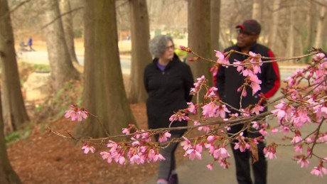 It's spring! Take a walk with your therapist