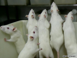 Rats injected with BBG not only regained their mobility but temporarily turned blue.