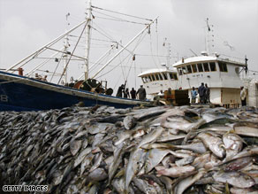 Many fisheries around the world are dangerously close to collapsing.