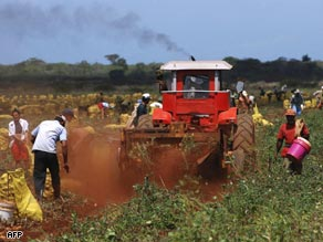 In 2008 unproductive land was privatized to help Cuba cope with dependence on imported food.