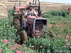 Afghan police officers use tractors to destroy poppy crops in Helmand province earlier this year.