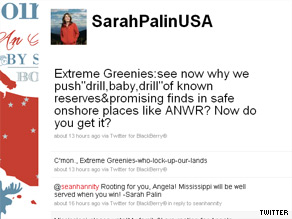 Palin is targeting opponents of ANWR drilling on Twitter.