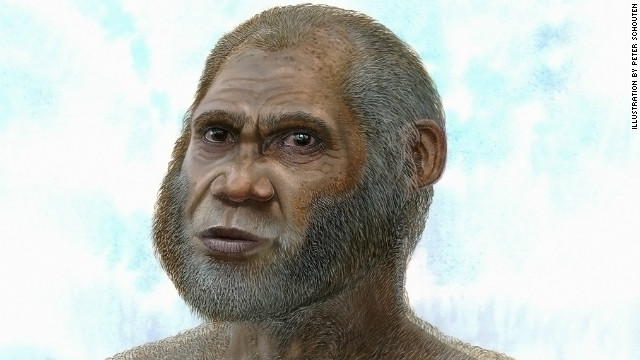 'Red Deer Cave' people, possibly a new human species?