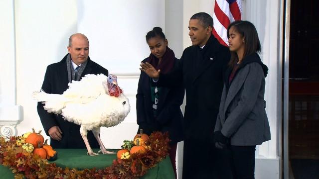 Картинки по запросу what happened with pardon turkey