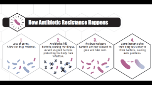 The National Action Plan for Combating Antibiotic-Resistant Bacteria