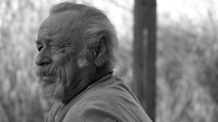 Jim Harrison in February 2008.