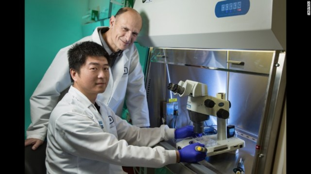 Juan Carlos Izpisua Belmonte, background, and colleague Ju Wu are leading this international research.