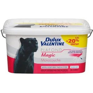 Peinture Dulux Valentine Blanc Achat Vente Pas Cher