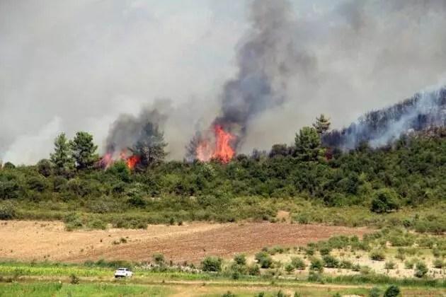 Isparta, Denizli, Elazığ'da orman yangınları
