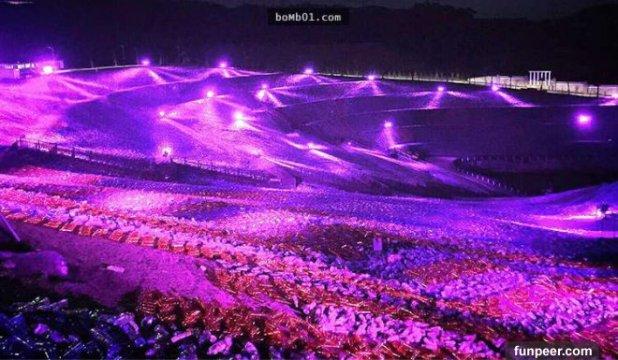 大學教授將400萬支寶特瓶擺在草皮還原世界名畫,入夜後的景象美到讓大家窒息也願意啊!