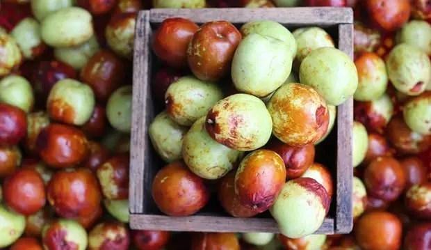 hünnap meyvesinin ruhsal hastalıklara faydası