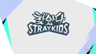 190410【SKZ中首48字幕组】找到了Stray Kids 未公开花絮第四集 中字