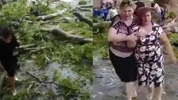 500 yaşındaki ağacın dalı kırıldı... Çok sayıda yaralı var