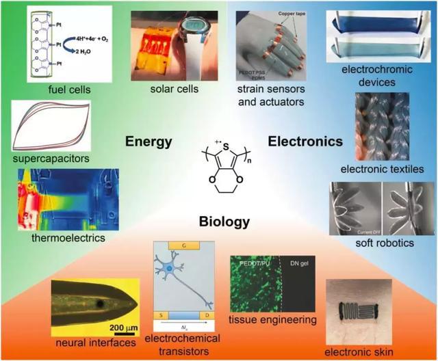 可拉伸導電聚合物(一) - 每日頭條