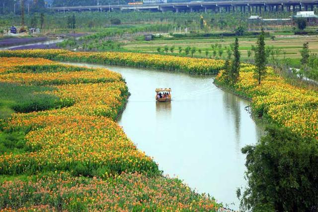 東莞華陽湖生態濕地公園融休閒旅遊,櫻花,多重溫泉體驗 - 每日頭條