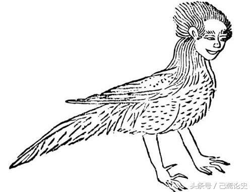 山海經神話故事系列:帝堯之子,能疾飛,中國人很早就知道其特性,能疾飛,不知是何原因沒有留給鷹腸子,現實生活中找到匹配度相似的了! - 每日頭條