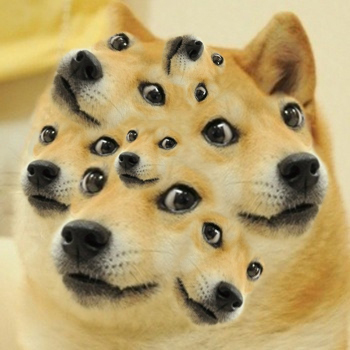 Image - 582749 | Doge | Know Your Meme