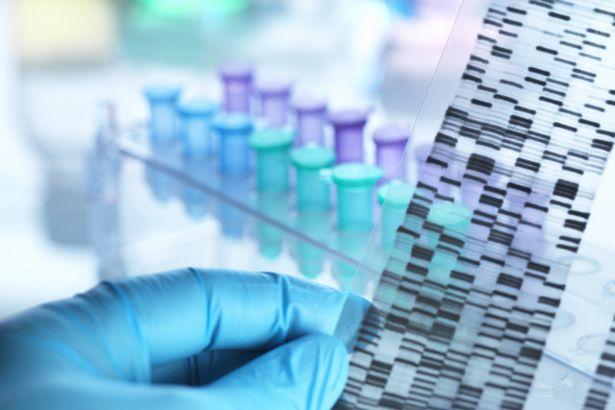 DNA Samples