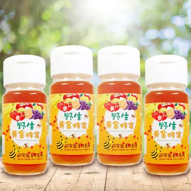 【田蜜園養蜂場】野生黃金蜂蜜700g(4大1小)