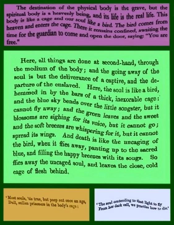 Best Friend Long Paragraphs
