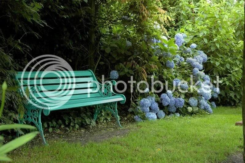 blauwewereld-4.jpg