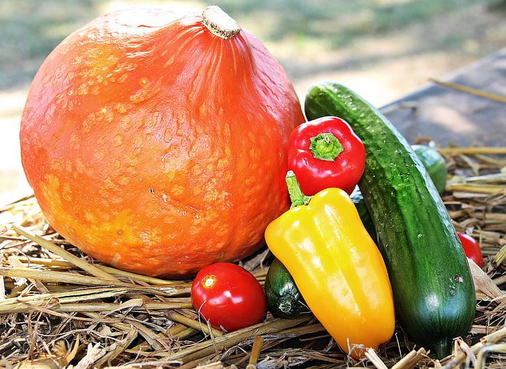 yellow bell pepper beside cucumber